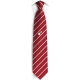 Official Tie SuisseRugby